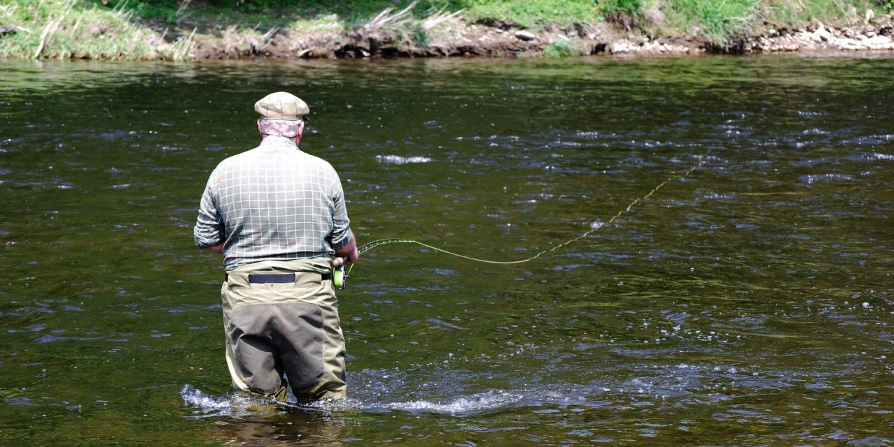 The Trout & Salmon 'Stinker' Quiz