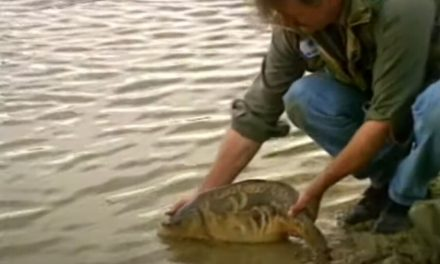 Carp fishing with Kevin Maddocks – Part One