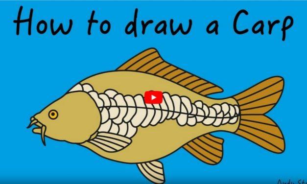 Kids Club | How to Draw Carp