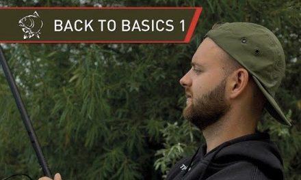 Carp – Back to Basics with Nash