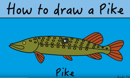 Kids Club | How to Draw Pike