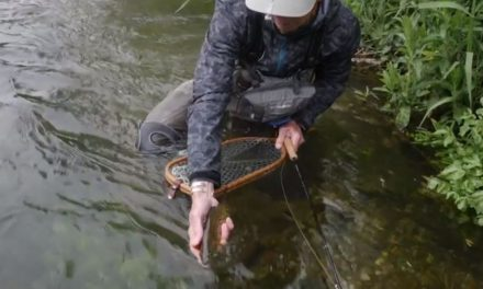 Chalkstream Challenges
