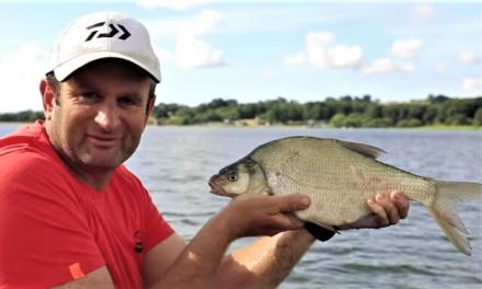 Steve Ringer: Feeder fishing on big natural venues