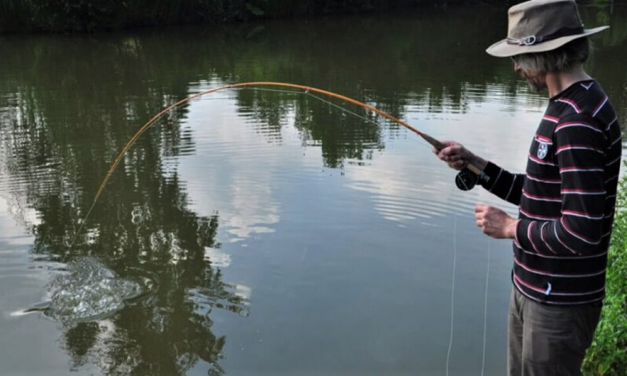 Something new to try: Summer fly fishing for coarse species