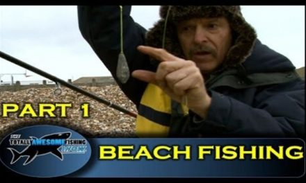 Get Fishing – Beach fishing tips for beginners (Part 1) -The Totally Awesome Fishing Show