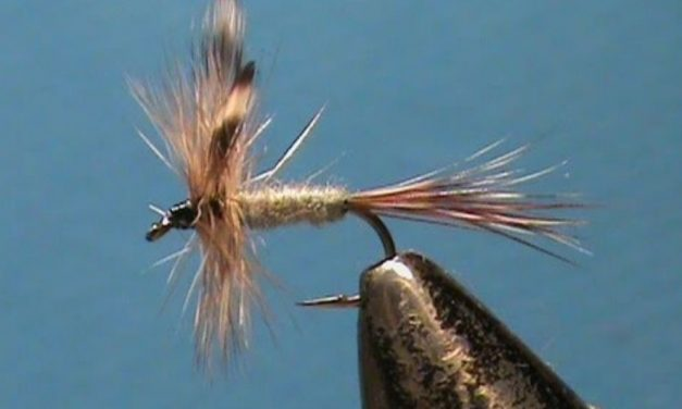 Get Fishing – Fly Tying for Beginners