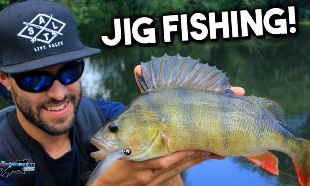 Get Fishing – Lure Fishing for Beginners – Perch on Jigs   TAFishing