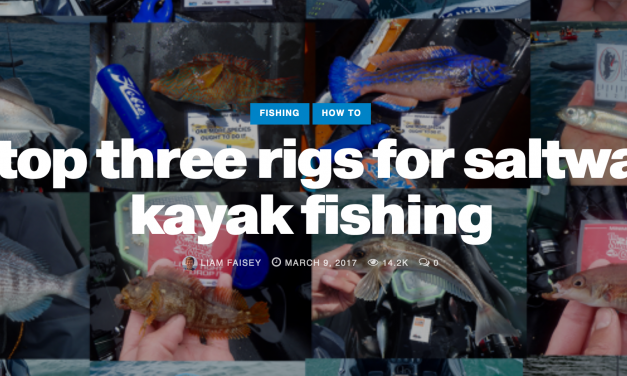 Species hunting with paddles: Top 3 Rigs for Kayak Fishing