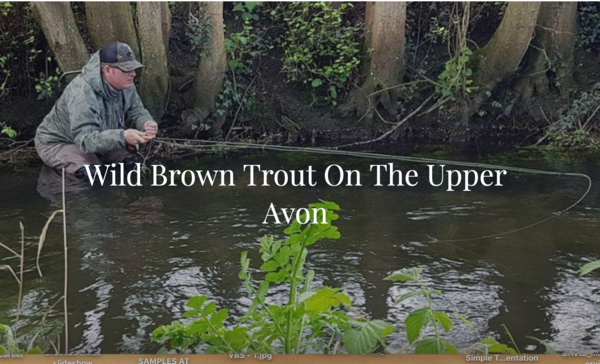 Wild Brown Trout on the Upper Avon: Tactics for fussy wild fish with Adam Sinclair
