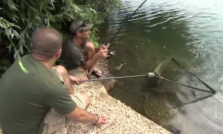 5 SURE-FIRE facts to catch more carp