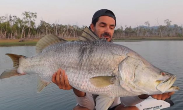 Topwater Dream Fish! (Barramundi).
