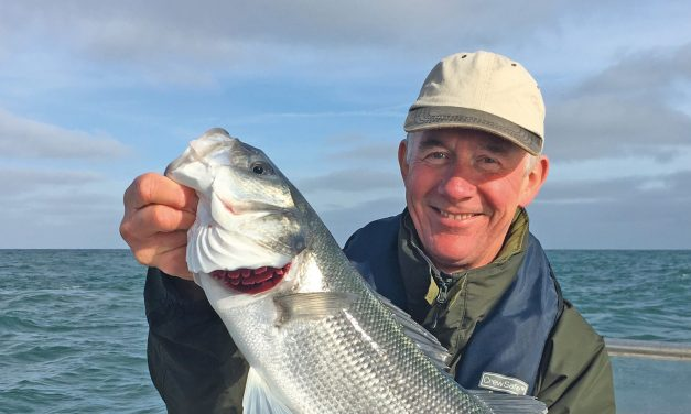 Great to be going bass fishing again – but take care