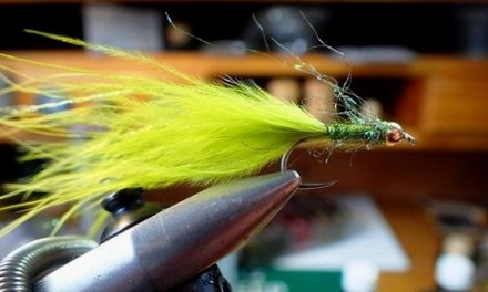 Easy to tie Damsel: Perfect summer pattern from Alan Liddle