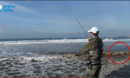 How to Catch Mullet on the Fly
