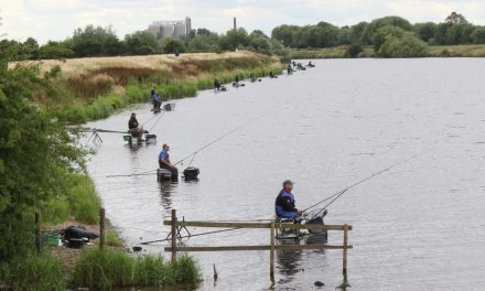 Match fishing gets green light from government thanks to new best practice guidelines