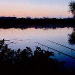 Keep on Night Fishing – Angling Trust Update