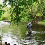 Wales Update: Driving to fish locally is now possible