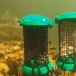 Jack Perks BaitCam Test: Pellet vs Meat for Barbel & Coarse Fish