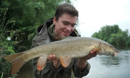 Feeder Fishing For Barbel and Chub on a River