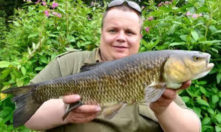 Stalking Chub – Summer on the River Blackwater