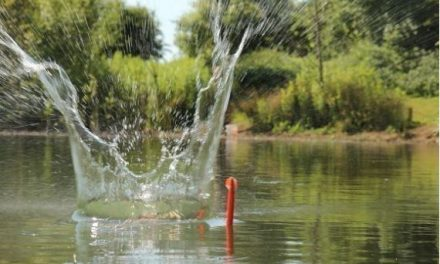 Effective Prebaiting for Carp