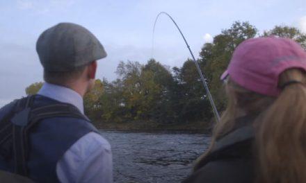 Salmon Catch & Release