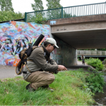 5 Tips for Urban Fly Fishing