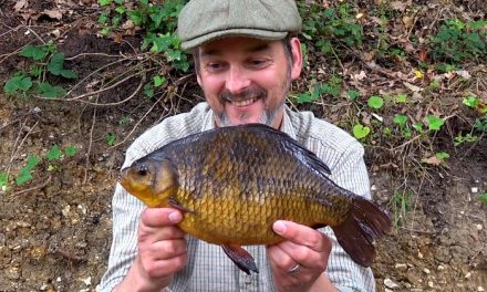 Crucians of the Moat – classic Coarse Fishing