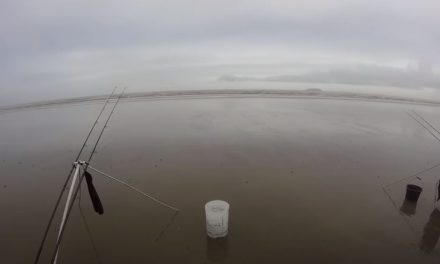Beach Fishing on the Bristol Channel (Big Bass!)