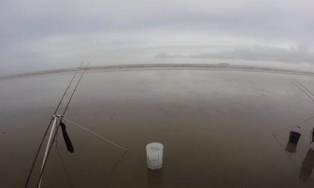 Beach Fishing on the Bristol Channel (Big Bass!)