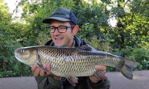 River Lea & Blackwater Chub Fishing