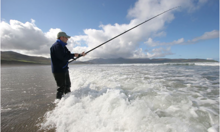 Understanding Surf, Swell and Tides (To Catch More Fish!)