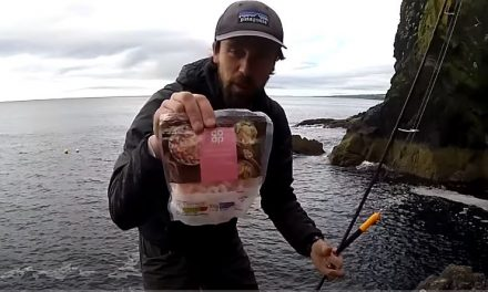 Float Fishing – Prawns Vs Mackerel!