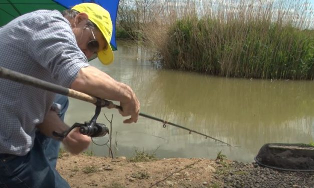 Simple Coarse Fishing with Prawns & Bread