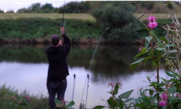 Barbel Fishing on the River Trent