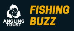 Fishing Buzz