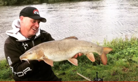 Big Barbel on a Budget