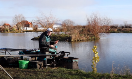 Feeding For Commercial Silvers – Alan Scotthorne