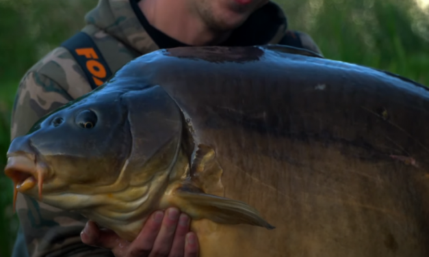 Fishing for Huge UK carp