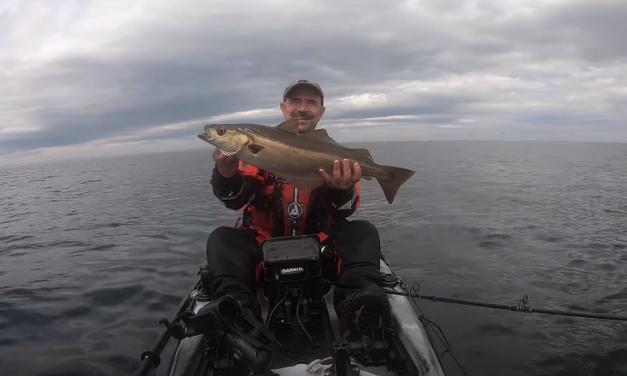 Kayak Fishing for Cod & Pollack
