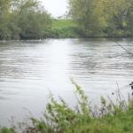 Angling Trust Riverfest Grand Final 2020