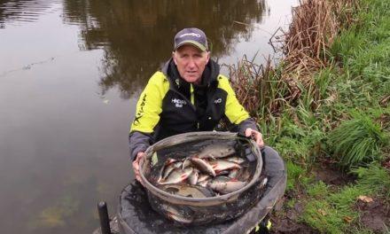 Fishing Chopped Worm