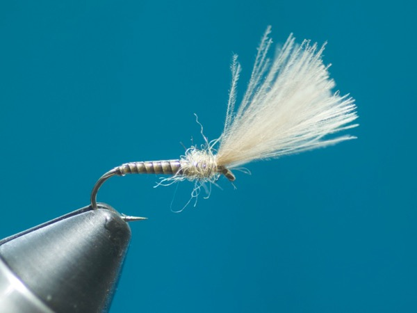 tie the quill emerger
