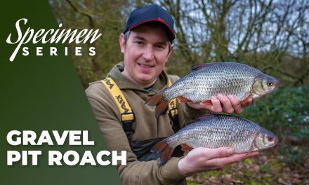Phil Spinks Specimen Series – Gravel Pit Roach Fishing
