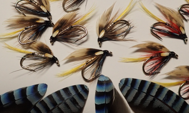 Fly Fishing for Wild Trout on Natural Lakes and Reservoirs