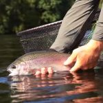 Reservoir trout fishing in Wales – Llyn Clywedog fishery