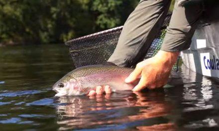 Reservoir trout fishing in Wales – Llyn Clywedog fishery