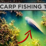 How To Catch MORE Carp This Spring