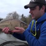 Carp Fishing With The Bread Method!