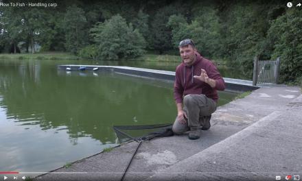 How To Fish – Handling carp